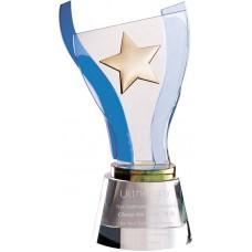 WS-01177金屬星水晶琉璃獎杯