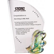 WS-01210彩虹琉璃配件水晶獎牌