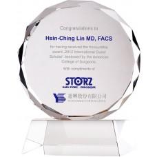 WS-03114十公分太陽片造型水晶獎牌