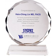WS-03115十六公分太陽片造型水晶獎牌
