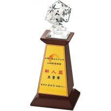 WS-03163水晶多切面立體頭木質獎座