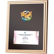 WS-44023脫蠟琉璃木質獎牌