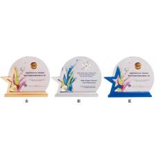 WS-14006木框晶采獎牌