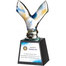 WS-48053勝利玻璃拉絲水晶獎座