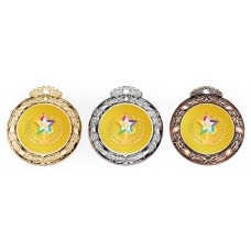 WS-04運動獎章